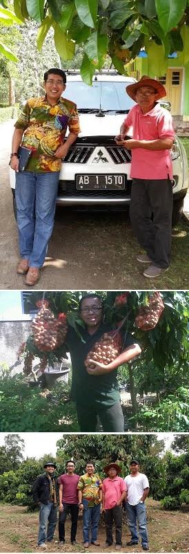 Keterangan foto (dari atas ke bawah): Saya bersama pak Isto. Di kebun klengkeng pak Isto di Muntilan, Jogjakarta. Pak Isto dan klengkengnya,