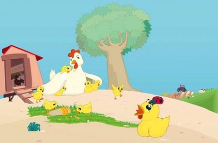 Jadilah Seperti Ayam Kampung